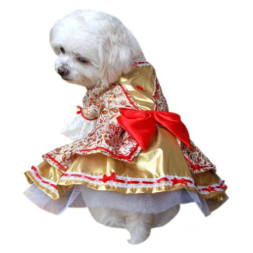 Lady Marie Dog Costume