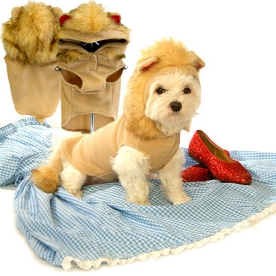 Courageous Lion Dog Costume