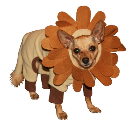Mane Crazy Lion Dog Costume