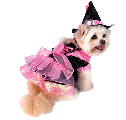 Kamila The Witch Dog Halloween Costume
