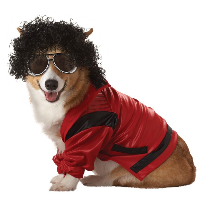 Michael Jackson Thriller Dog Costume  sc 1 st  Costumes For Dogs & Celebrity Costumes For Dogs : People Dog Halloween Costumes