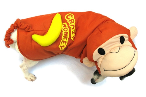 Curious Monkey Dog Costume