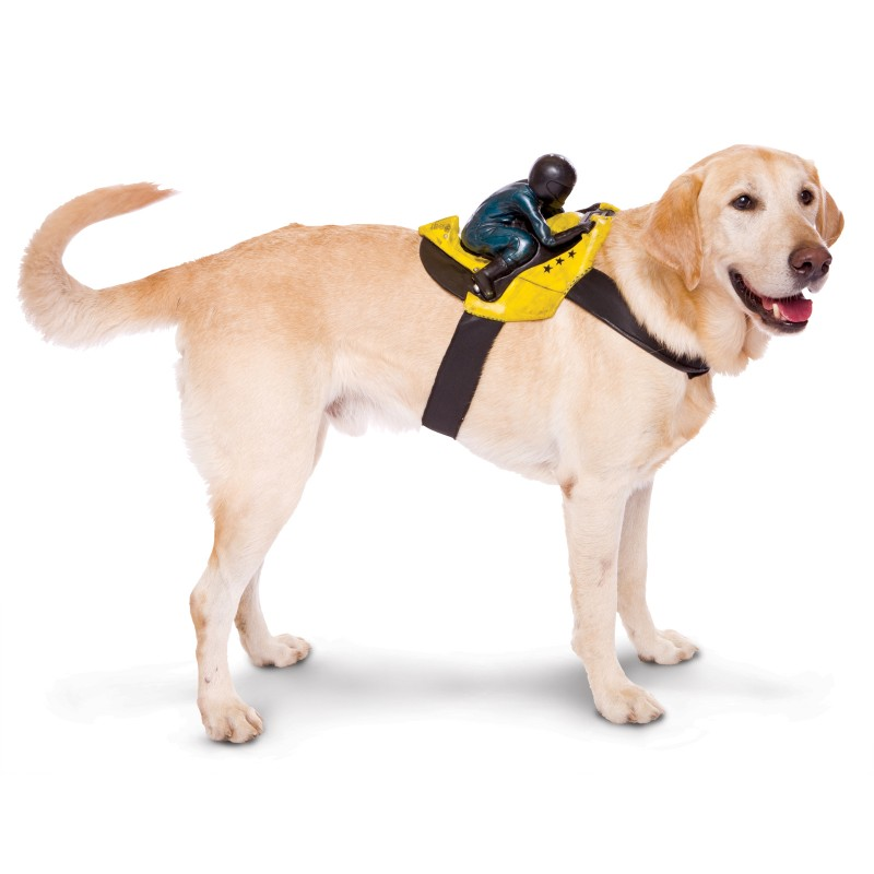 Motorcycle Rider Halloween Dog Costume