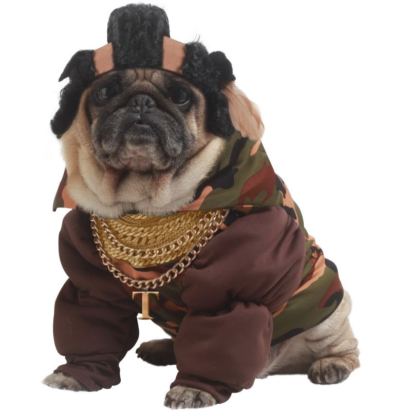 Mr T Inspired Halloween Dog Costume