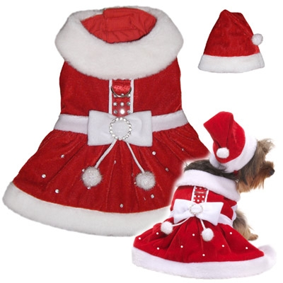 Mrs. Santa Claus Christmas Dog Costume