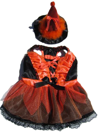 Lucinda The Witch LED  Dog Halloween Costume