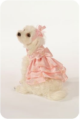 Pink Satin Bridesmaid Dog Dress Set