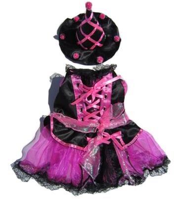 Corydon The Witch Dog Halloween Costume
