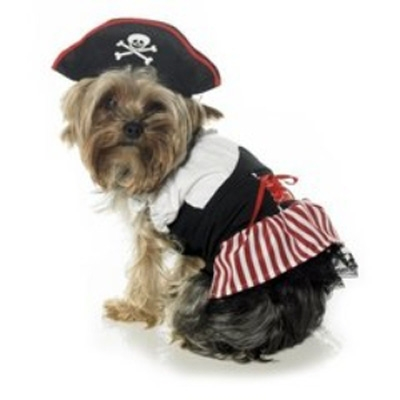Pirate Dress Halloween Dog Costume