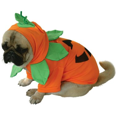 Jack O' Pumpkin Halloween Dog Costume