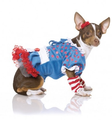 Punk Raggedy Ann Halloween Dog Costume