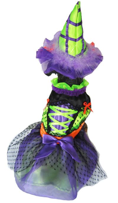 Selena Witch Dog Halloween Costume