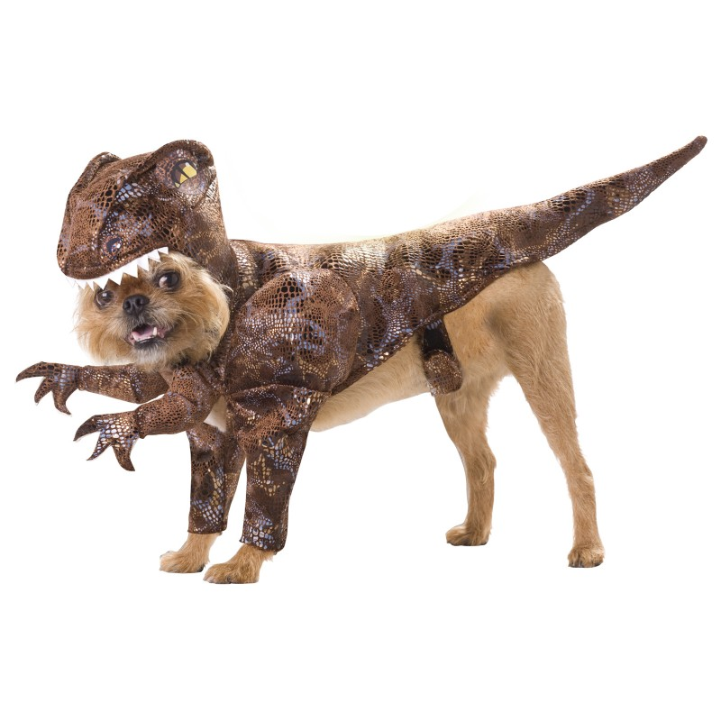 Raptor Dinosaur Halloween Dog Costume