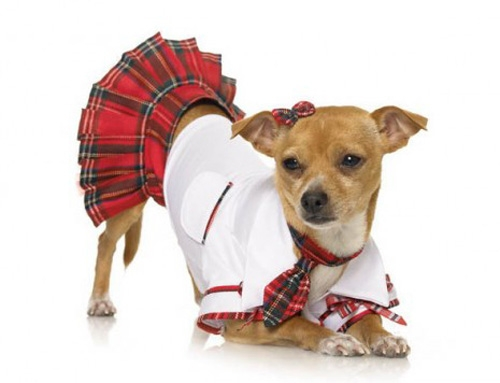 Red School Girl Halloween Dog Costume, Dog Costumes