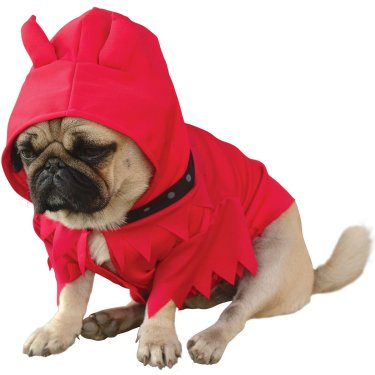 You Little Devil Halloween Costume For Dogs