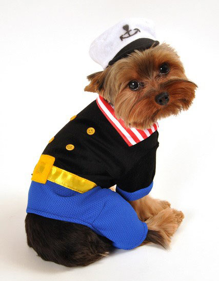 Navy Sailor Halloween Dog Costume