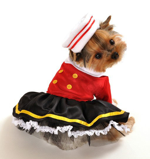 Sailor's Chic Halloween Dog Costume