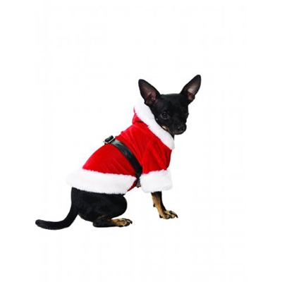 Santa Suit Halloween Dog Costume