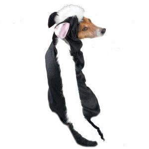 Skunk Costumes For Dogs