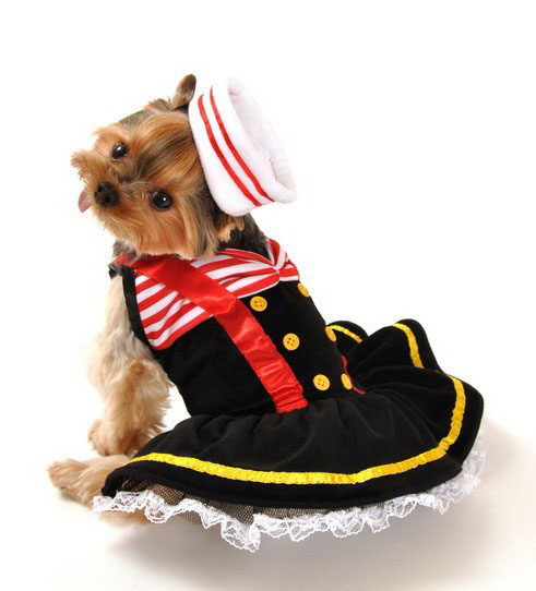Sailor Girl Halloween Costume For Dogs