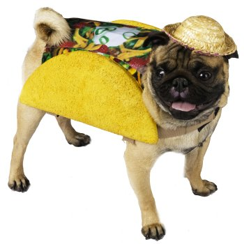 Party Taco Halloween Costume For Dogs
