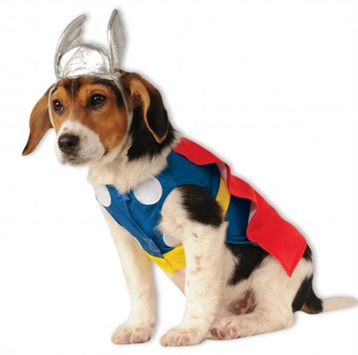Thor Costume For Dogs
