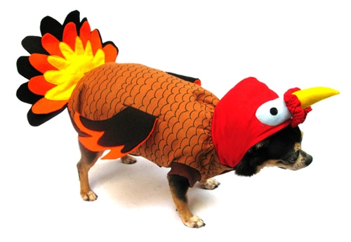 Turkey Thanksgiving Dog Costume
